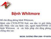 Bệnh Whitmore